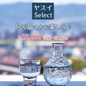 ヤスイSelect ¥22,000(送料・消費税込)